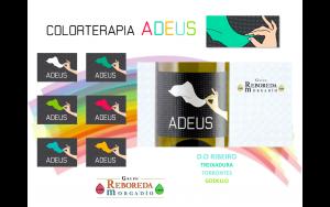 BLOG colortersapia
